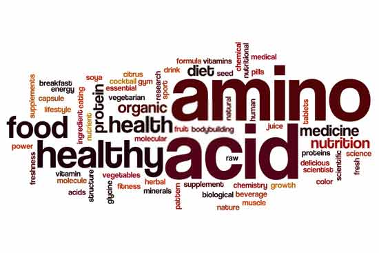 Why the amino acids are required